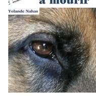 """""""Bête à mourir"""" de Yolande Nahas"""