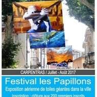 FESTIVAL D'ART CONTEMPORAIN LES PAPILLONS